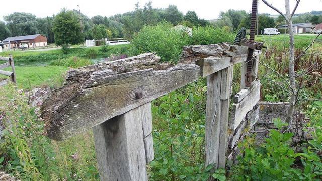 Longroy Jardin 15
