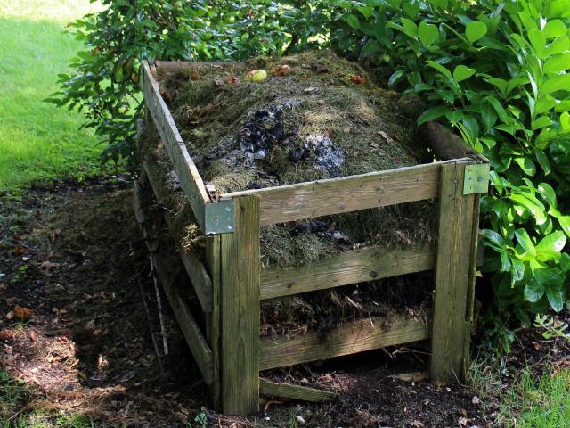 compost-419259-1920.jpg